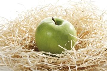Green apple in wood shavings