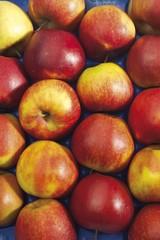 Apples, format-filling