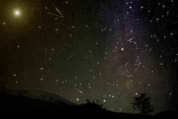 mountains stars meteors spruce night