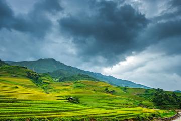 Poster Hill Beautiful landscape of rice terrace fields in Mu Cang Chai, Vietnam