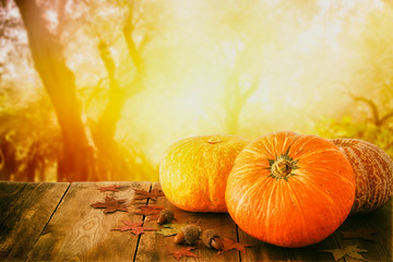 Pumpkins and autumn leaves on wooden table. thanksgiving and halloween concept