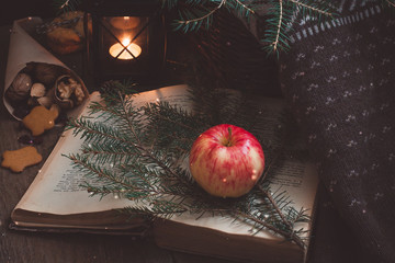 Red and yellow apple on a branch of a Christmas-tree and an old book near the black lantern or candlehander