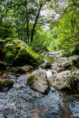 Le ruisseau d'Audiernes à Peyrusse-le-Roc