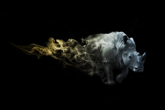 digital art image of a rhino with amazing photoshop effect