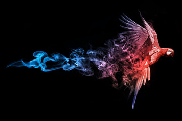 Macaw blue red animal kingdom collection with amazing effect Fotomurales