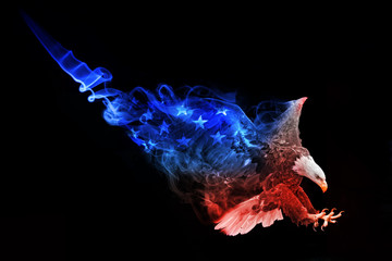 flag of the united states american bald eagle animal kingdom collection colorfull wildlife image with amazing effect