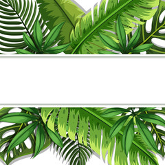 Banner design with green leaves in background