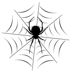 Vector Spider On the Web