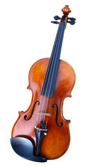 Classical violin isolated on white background