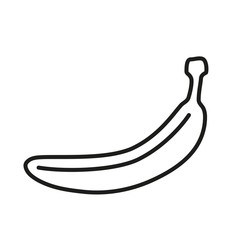 Banana fruit line vector art