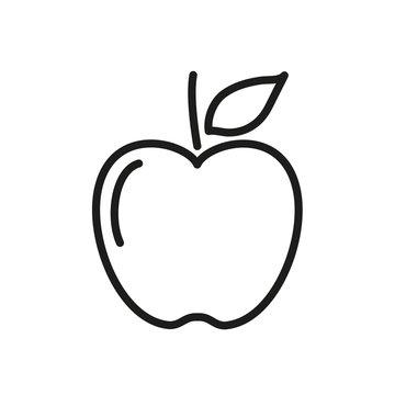 Apple fruit line vector art
