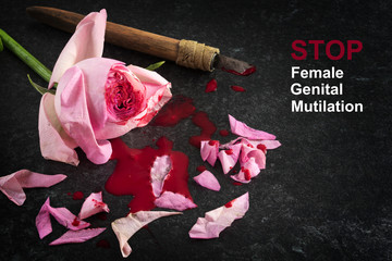 Stop female genital mutilation, cut rose blossom, blood and knife on a dark stone background with text, concept zero tolerance for FGM