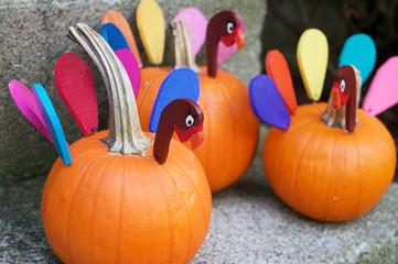 Turkey Pumpkin