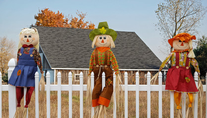 autumn scarecrow dolls on white fence with rural barn