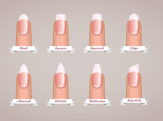 Professional manicure different shapes of nails vector