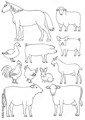 Line Art Farm Animals : Quot farm animals line art set fotolia の ストック画像とロイヤリティフリーの