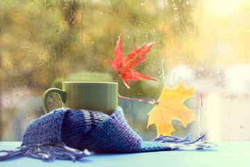 hot drinks in an autumn style/ green mug in a blue scarf on the background of a wet window with maple leaves