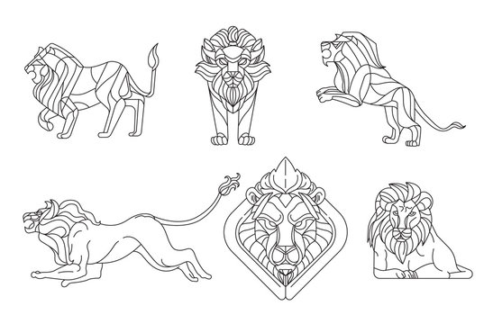 Lion Line Drawing Photos Royalty Free Images Graphics Vectors Videos Adobe Stock 3x3 4x4 5x7 available in the following formats: lion line drawing photos royalty free