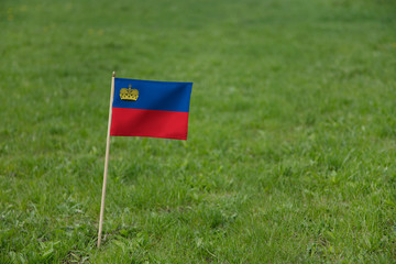 Liechtenstein flag on a green grass lawn field background. National flag of Liechtenstein waving outdoor