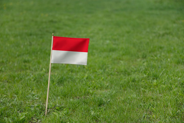 Monaco flag on a green grass lawn field background. National flag of Monaco waving outdoor