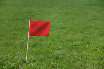 Morocco flag, Moroccan flag on a green grass lawn field background. National flag of Morocco waving outdoor