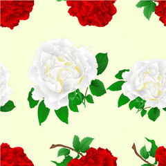 Seamless texture flowers red and white roses stem  vintage vector illustration editable hand draw