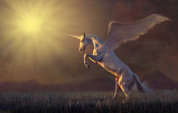 Pink unicorn with the wings reared in the grass on mountains background