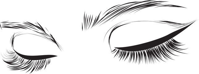 Beautiful woman eyes with long eyelashes Vector illustration