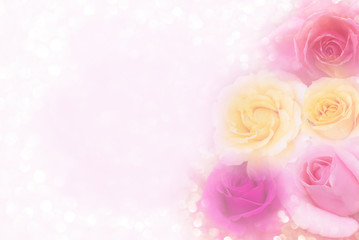 beautiful soft pink purple and yellow roses background in pastel tone for valentine or wedding card