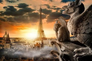Aluminium Prints Historic monument Cloudy sky over Paris