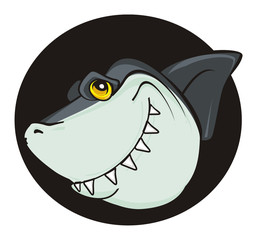shark, predator, teeth, jaws, fin, fish, cartoon, animal, ocean, gray, wild, zoo, head, banner black, peek up
