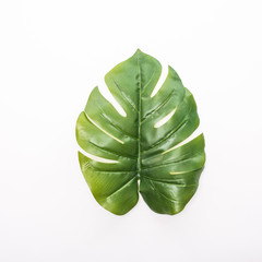 Green tropical, palm leaves, leaf branches on white background. flat lay, top view