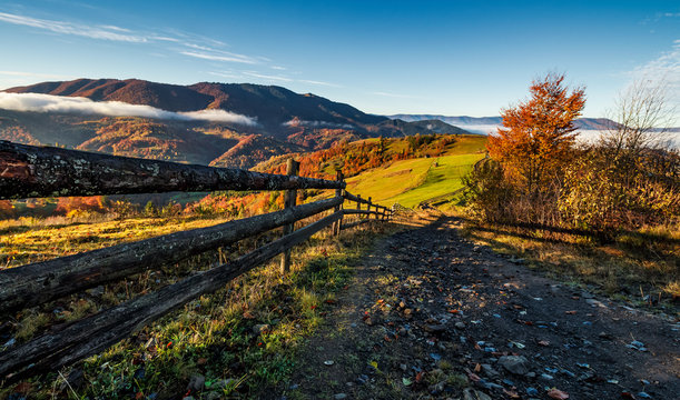 gorgeous foggy morning in mountainous countryside. beautiful landscape with path near the wooden fence and trees with yellow foliage on hillsides in late autumn