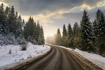 winding road through winter spruce forest. beautiful nature scenery on foggy and cloudy morning. lovely transportation background.