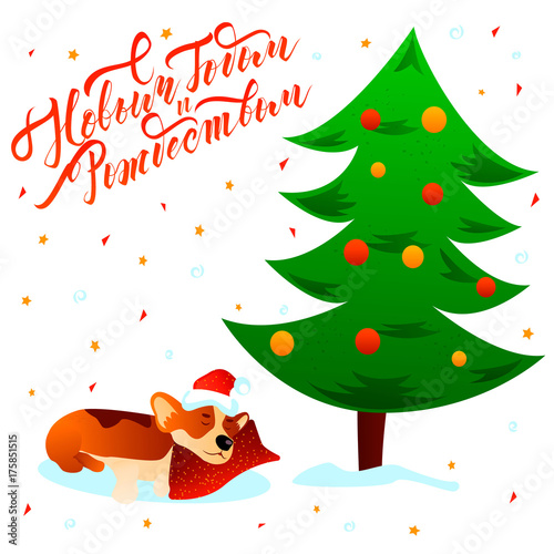 merry christmas happy new year russian text lettering postcard with cute sleeping cartoon corgi dog under