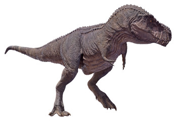 3D rendering of a Tyrannosaurus Rex on the move.