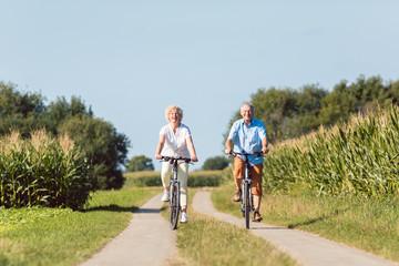 Senioren Frau und Mann bei bester Gesundheit auf dem Fahrrad im Sommer