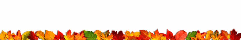 Bunte Herbstblätter als Bordüre oder Banner