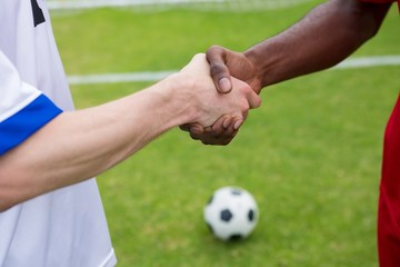 Cropped image of soccer player doing handshake