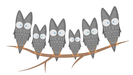 Vector cartoon clip art illustration of a cute owls mascot. isolated on white background. flying birds with big eyes sitting on a branch