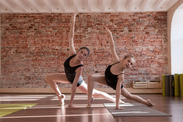 Young ballerinas workout. Synchronized work. Sport for girls, ladies dancing in class. Gym background with free space, healthy teenager lifestyle, femininity concept