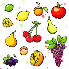 Collection of cartoon juicy fruits and berry. Vector illustration. Set of colorful fruit and berry icons. Isolated on white