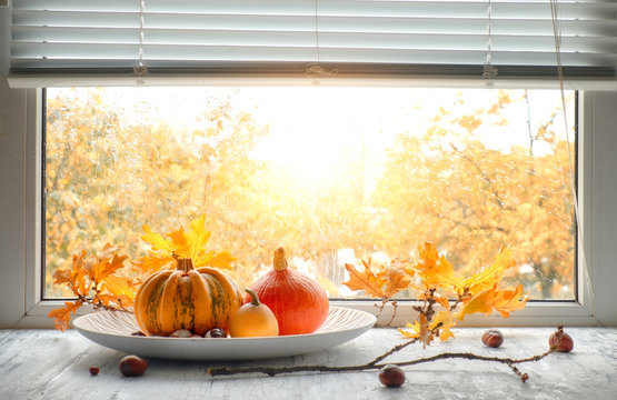 Pumpkins and yellow oak leaves by the window on a rainy day