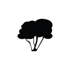hazel tree icon