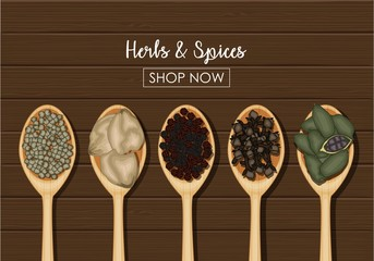 Spices in wooden spoons over wooden background