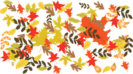 autumn leaves-Autumn background with colorful leaves