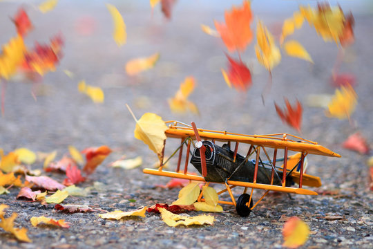 Autumn leaves blowing in the wind across a yellow model airplane