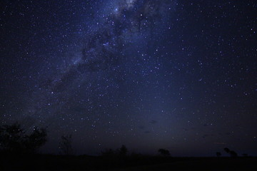 Love stars, Australia