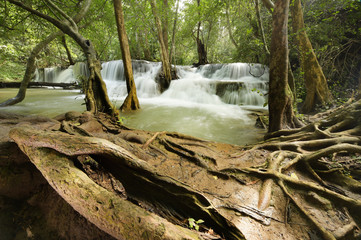 Beautiful waterfall in green forest in nature