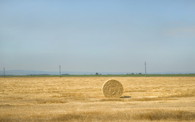 Landscape of a large hay field